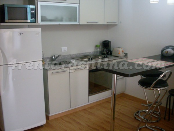 Uriarte and Paraguay I, apartment fully equipped