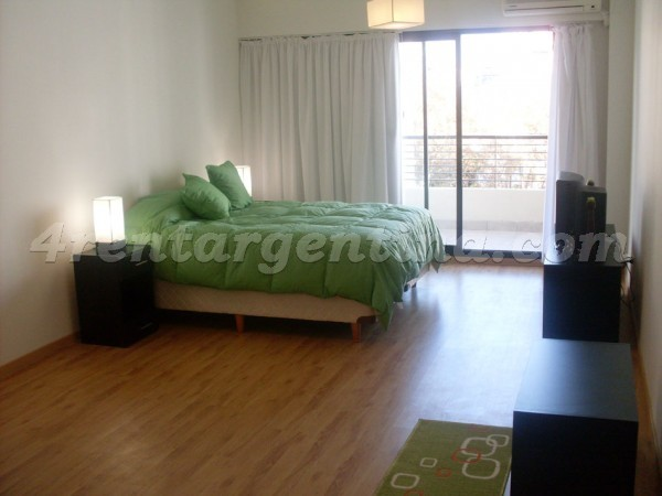Uriarte and Paraguay II, apartment fully equipped