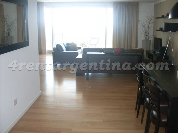 Manso and Alvear Pacini: Furnished apartment in Puerto Madero