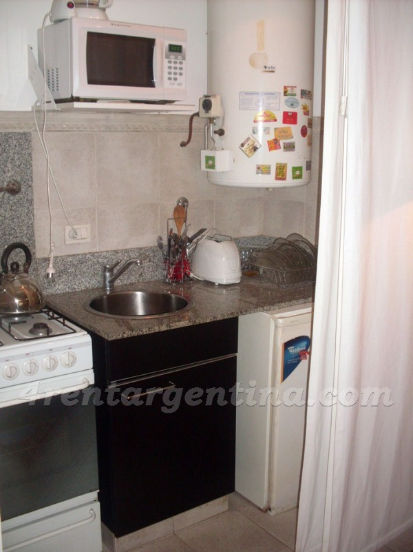 Vicente Lopez and Pueyrredon VI: Furnished apartment in Recoleta