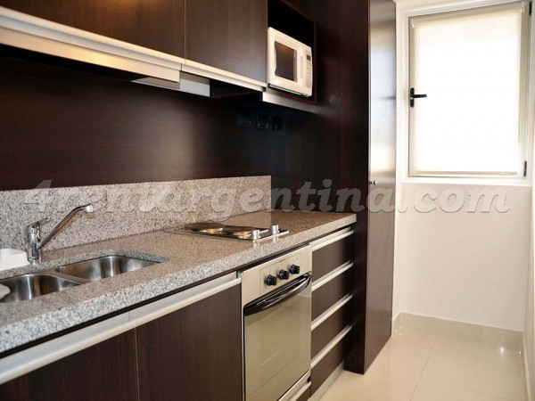 Gorriti and Billinghurst: Apartment for rent in Palermo