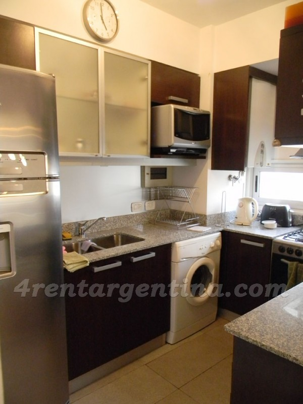 Apartment Ortega y Gasset and Baez - 4rentargentina