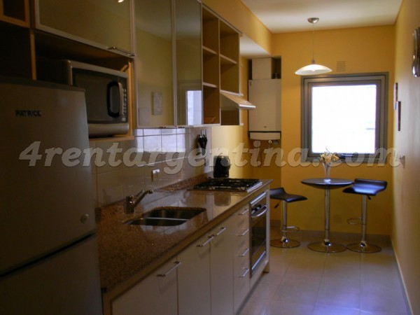 Manso et Ezcurra V: Furnished apartment in Puerto Madero