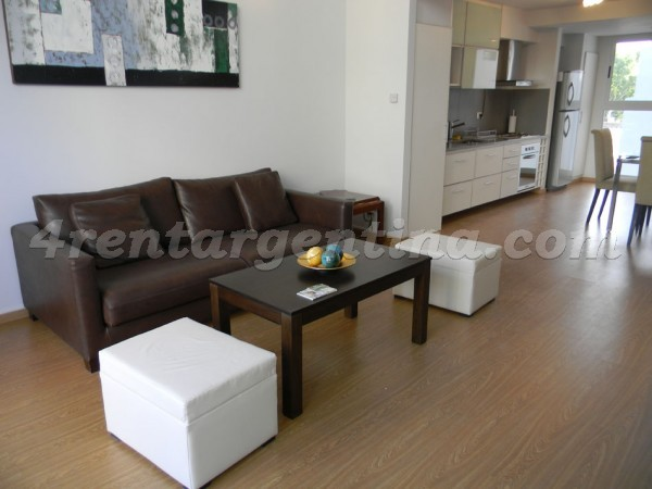Costa Rica and Dorrego, apartment fully equipped