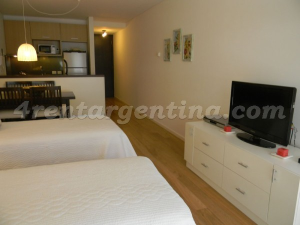 Bulnes et Las Heras III: Furnished apartment in Palermo