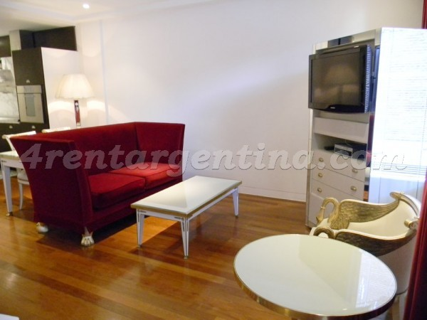 Eyle and Manso I: Apartment for rent in Buenos Aires