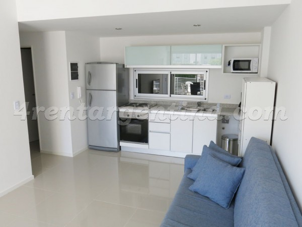 Santa Fe and Carranza: Furnished apartment in Palermo