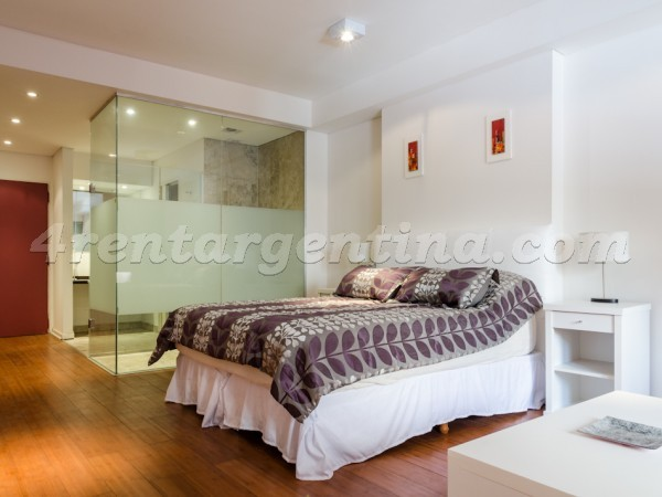 Rodriguez Pe�a and Sarmiento XI: Furnished apartment in Downtown