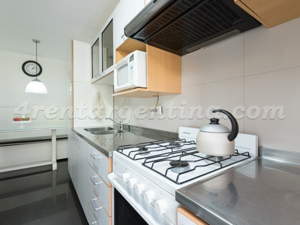 Cervi�o and Lafinur I, apartment fully equipped