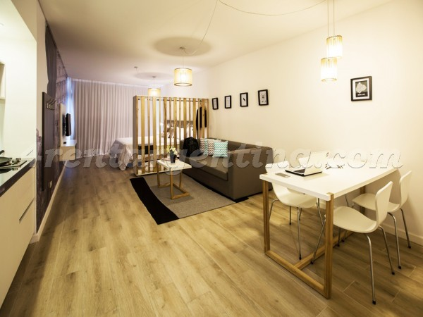 Montevideo and Arenales VII, apartment fully equipped