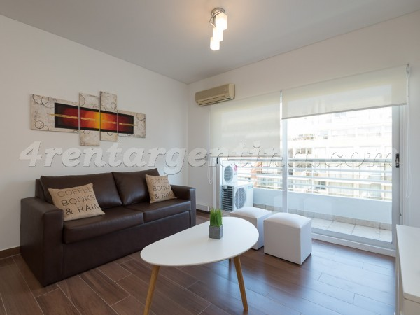 Manso and Ezcurra VII: Furnished apartment in Puerto Madero