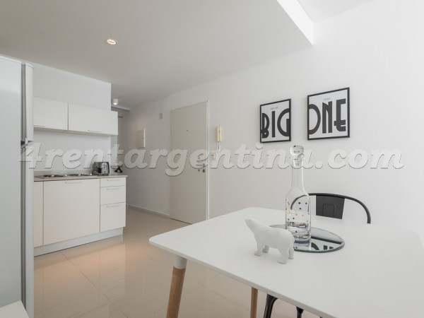 Segui and Rep. de la India: Apartment for rent in Palermo