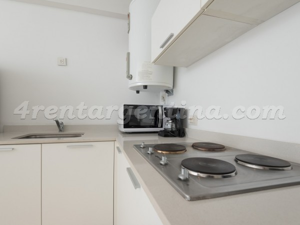 Segui and Rep. de la India: Apartment for rent in Buenos Aires